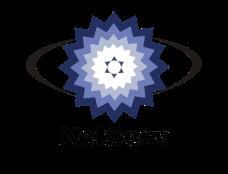 netserv_logo_transparent_final